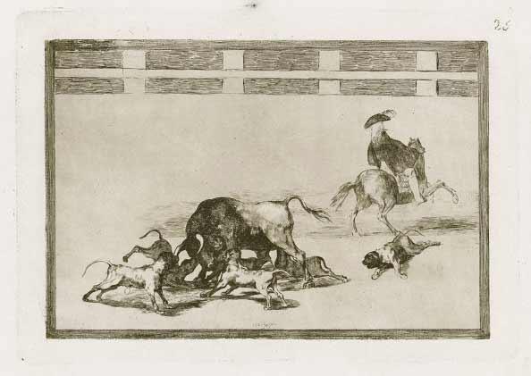 Goya - Tauromaquia - Echan perros al toro