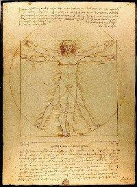 Leonardo da Vinci – Hombre de Vitruvio (Homo cuadratus), 1490. Plumín, pluma y tinta sobre papel. 34,4 x 25,5 cm. Galería de la Academia de Venecia, Venecia, Italia.