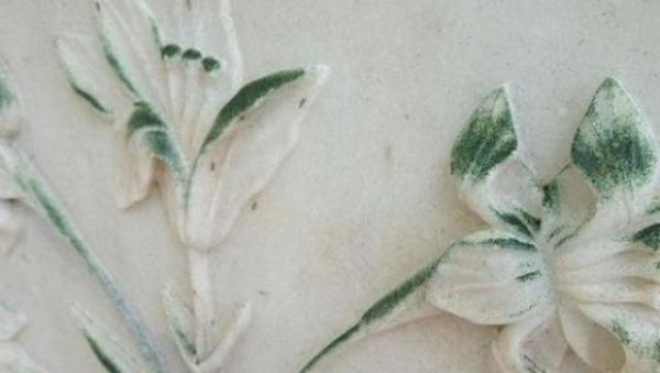 Efecto del mosquito sobre el mármol del Taj Mahal.