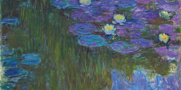 Monet - Nymphéas en fleur, 1914-17.