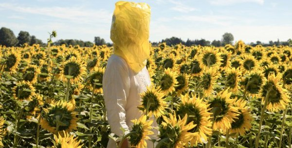 Elina Brotherus - Portrait Series (Gelbe Musik with Sunflowers), 2016 © Elina Brotherus, VEGAP, Madrid, 2019.